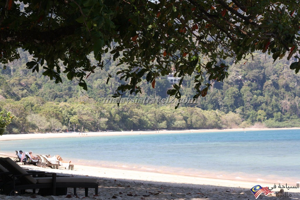 The Andaman7