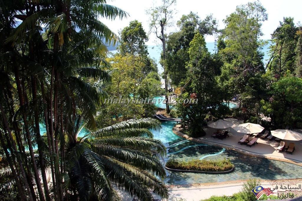 The Andaman8