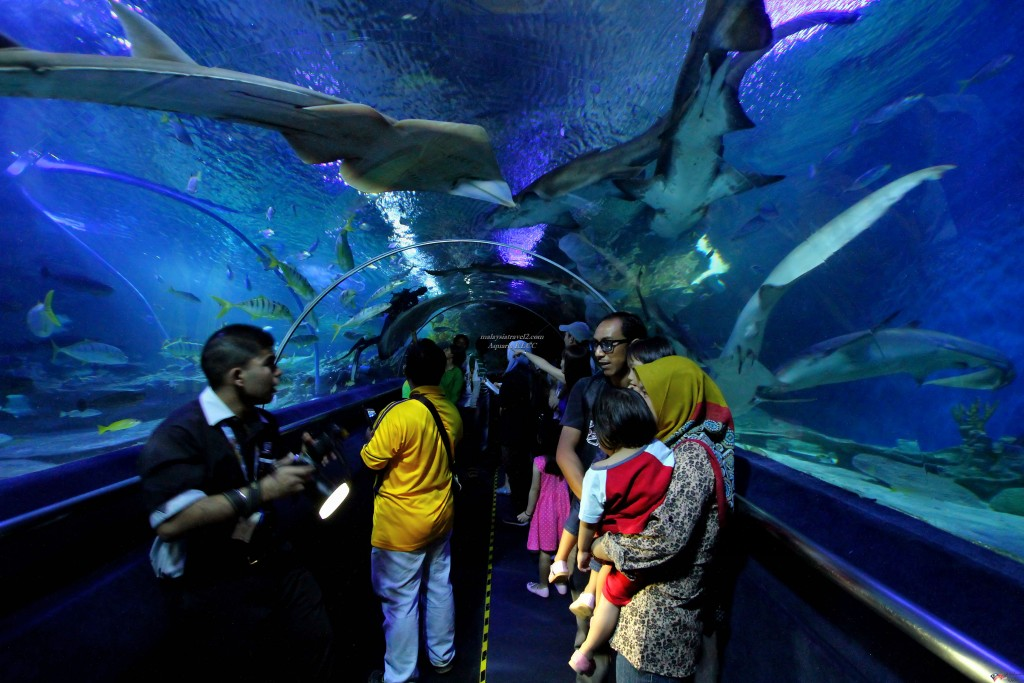 Underwater_tunnel_in_Aquaria_KLCC