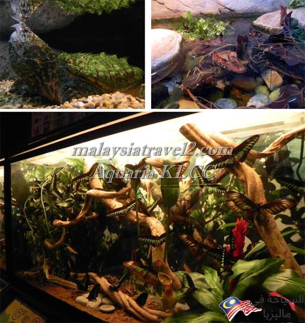 aquaria klcc 04
