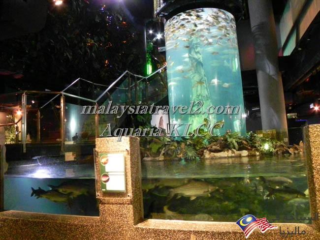 aquaria klcc 07