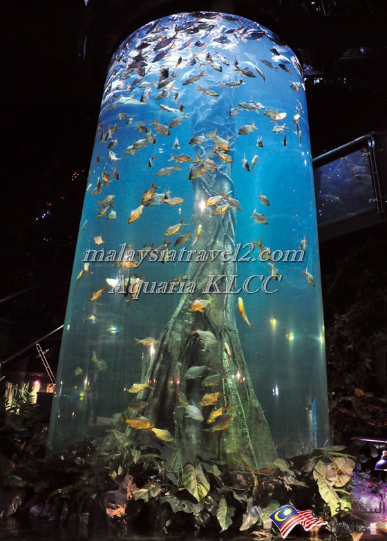 aquaria-klcc-kuala-lumpur-9