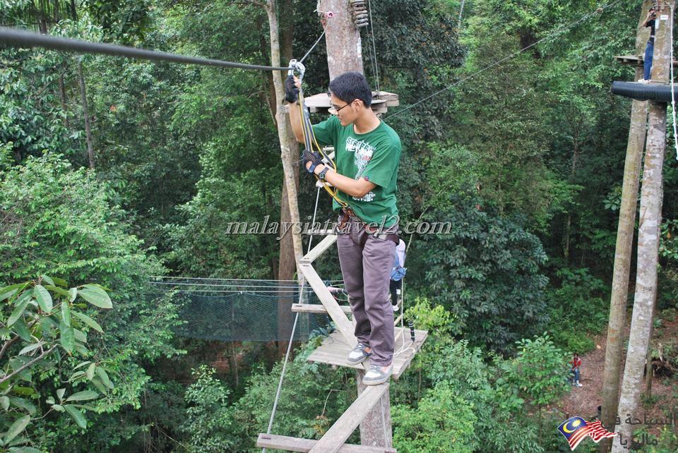 skytrex adventure shah alam11