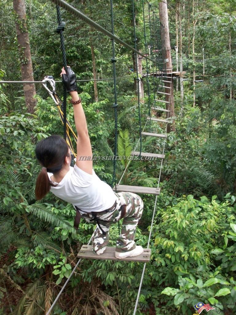 skytrex adventure shah alam12