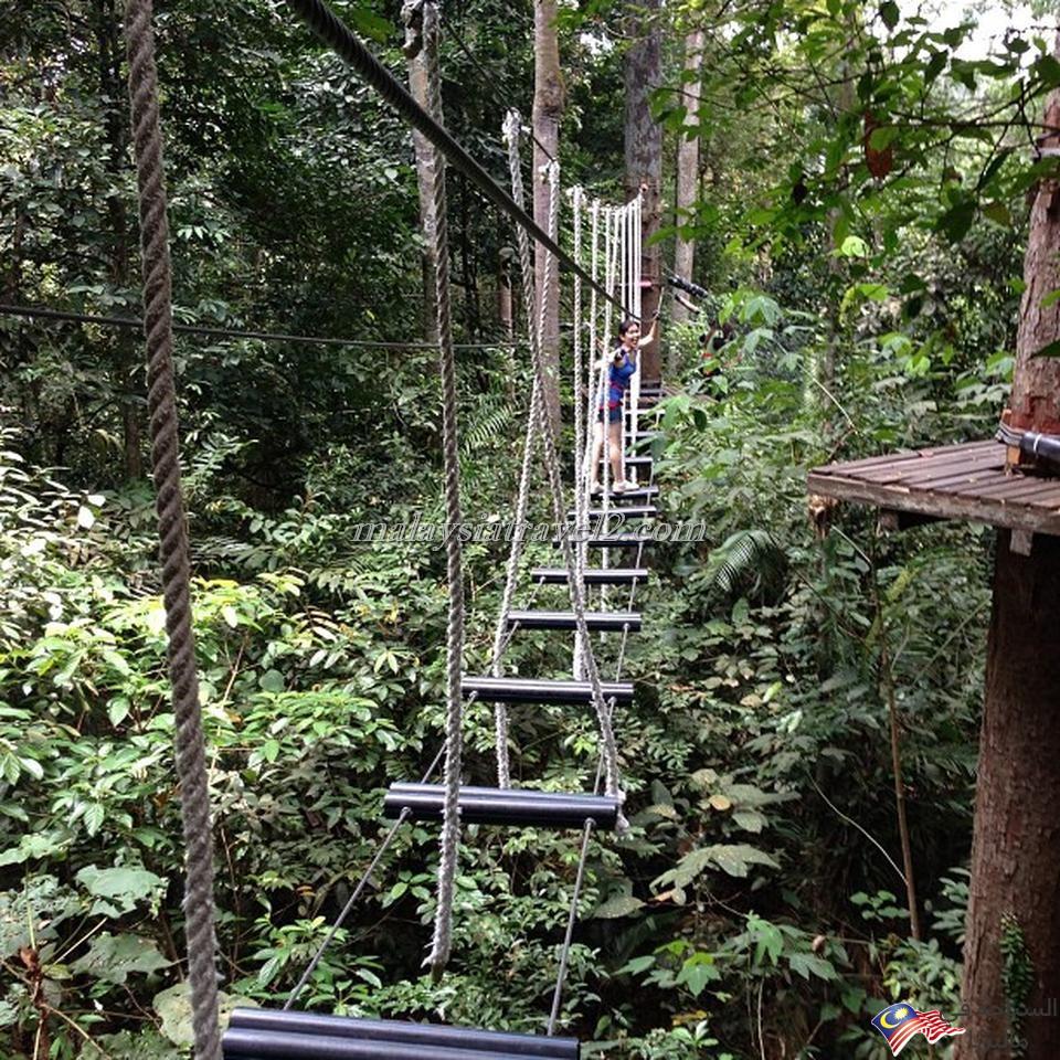 skytrex adventure shah alam2