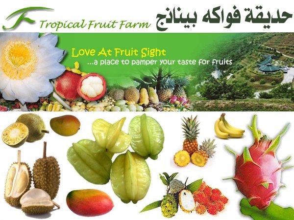 tropical fruit farm حديقة الفواكة في بينانج